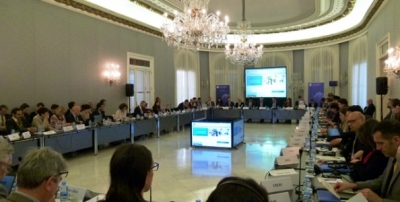 UfM working groups meeting