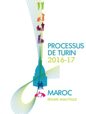 Executive Summary of the Torino Process 2016-17 Morocco report cover page