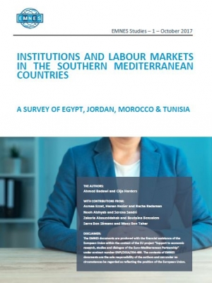 Institutions and labour markets in the Southern Mediterranean countries: A survey of Egypt, Jordan, Morocco and Tunisia