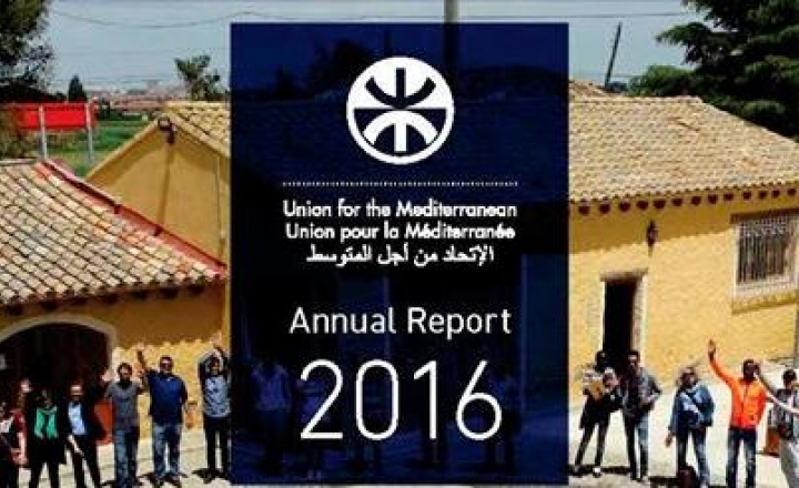 UfM annual report 2016