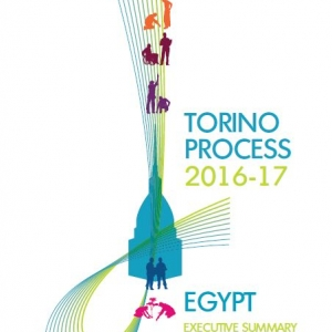 Executive Summary of the Torino Process 2016-17 Egypt report cover page