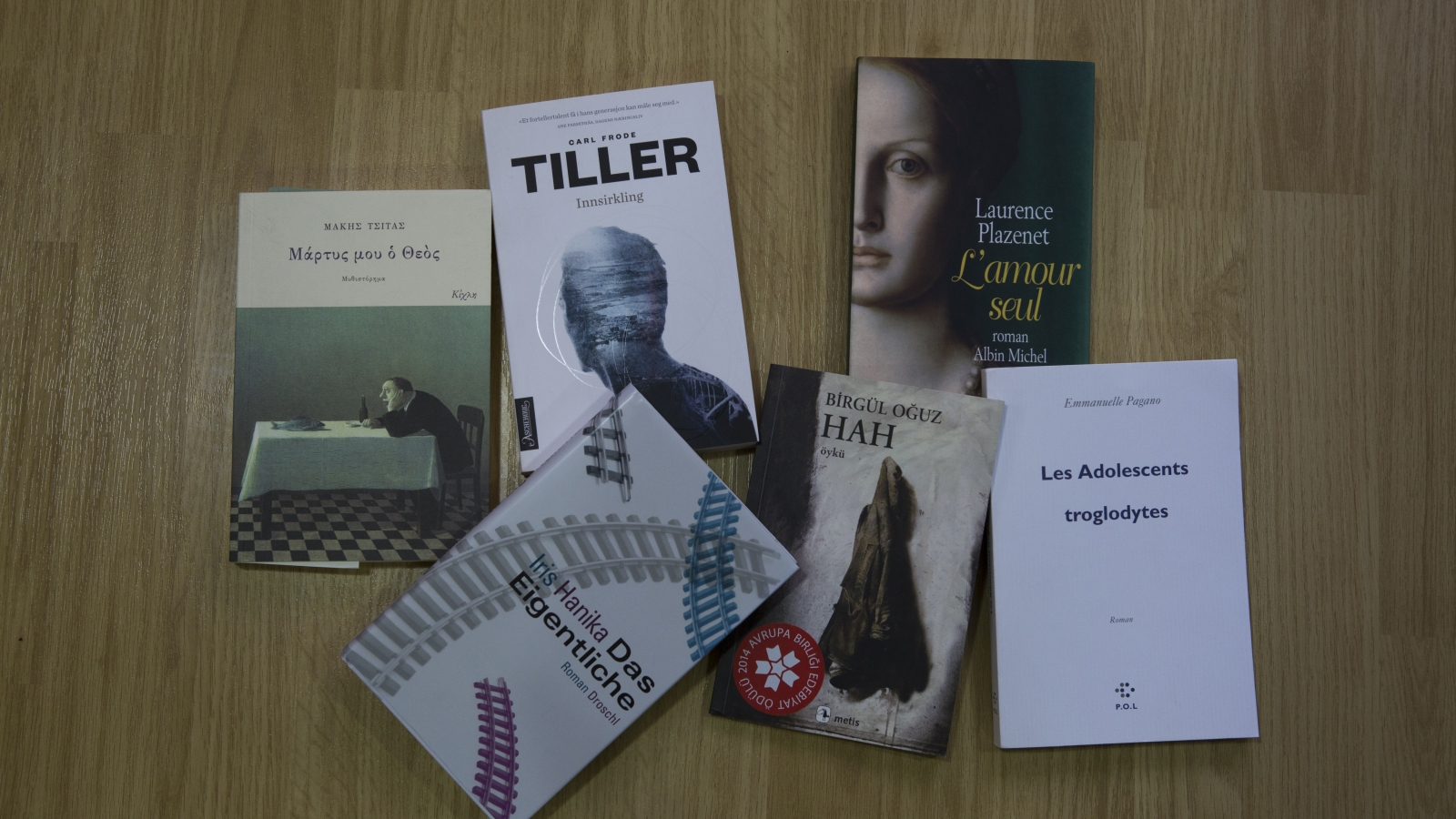 "Project ""First time in Georgia: 10 EU Literature Prize winners"" translates European authors into Georgian language"