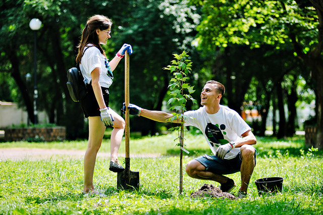 YEAs plant trees in Ukraine for World Environment Day