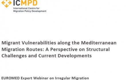 EUROMED Migration project holds webinar on migrant vulnerabilities