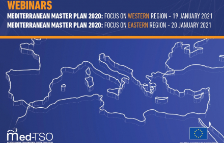 Energy: EU-funded Med-TSO presents Mediterranean Master plan 2020