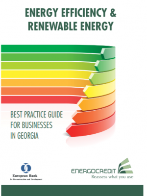 Energy Efficiency and Renewable Energy: Best Practice Guide for Businesses in Georgia