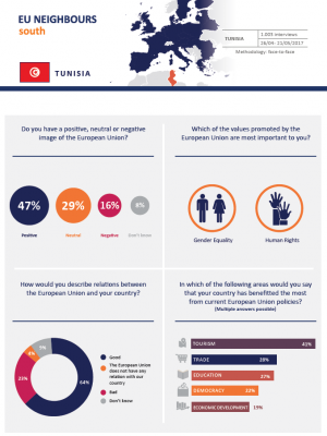 factsheet 2017 tunisia