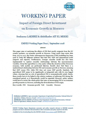 EMNES Working Paper: Impact of Foreign Direct Investment on economic growth in Morocco