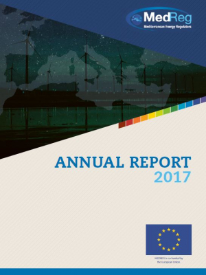 MEDREG Annual Report 2017