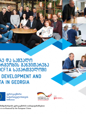 SME Development and DCFTA in Georgia