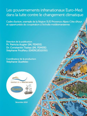 FEMISE report : Euro-Med sub-national governments in the fight against climate change