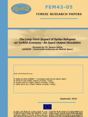 FEMISE Research Paper FEM43-05: The Long-Term Impact of Syrian Refugees on Turkish Economy