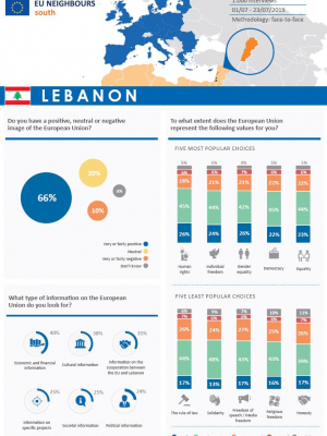 Opinion Poll 2019 - Lebanon (factsheet)