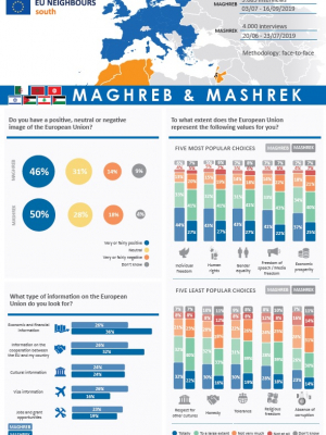 Opinion Poll 2019 – regional overview (factsheet)