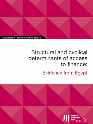 EIB Working Papers 2019/10 - Structural and cyclical determinants of access to finance: Evidence from Egypt