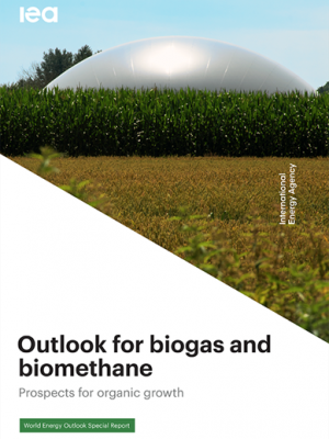 Outlook for biogas and biomethane