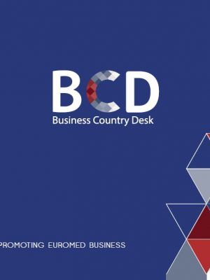 Presentation brochure of EBSOMED Business Country Desk