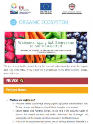ORGANIC ECOSYSTEM newsletter – October 2020