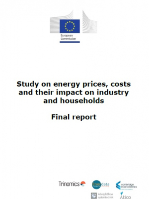 Study on energy prices, costs and their impact on industry and households