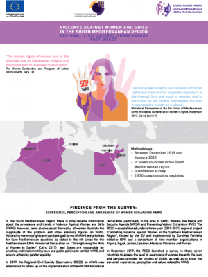 Factsheet on violence against women and girls in the South Mediterranean