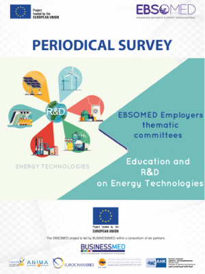 EBSOMED periodical survey : Education and R&D on Energy Technologies