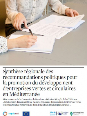 SwitchMed - Regional summary of policy recommendations for promoting the development of green and circular enterprises in the Mediterranean