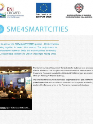 SME4SMARTCITIES online guide – Current Municipal Procurement Trends Guide for SMEs
