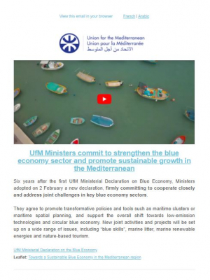 Union for the Mediterranean newsletter – February 2021