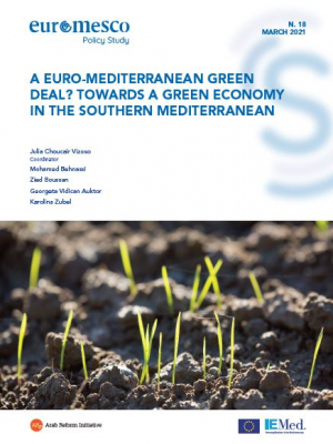 Euromesco Policy Study 18 - A Euro-Mediterranean Green Deal ? Towards a Green Economy in the Southern Mediterranean