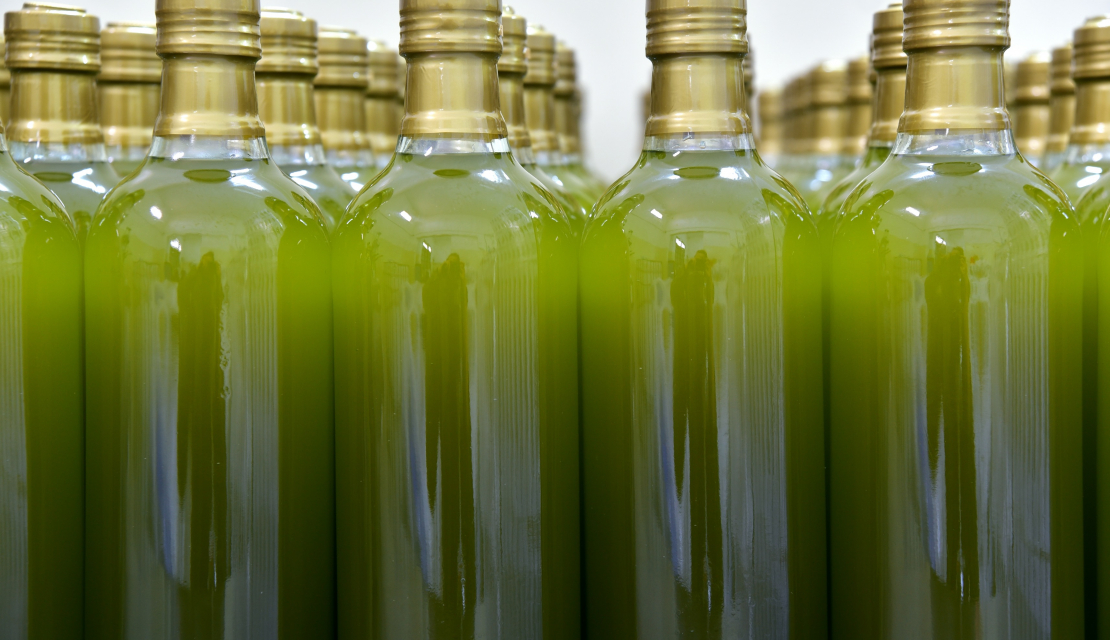 EU-funded ARTOLIO training week empowers small olive oil producers
