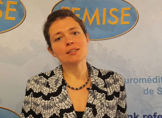 EU-funded FEMISE Med Change Makers latest interview deals with environmental taxation and green public procurement