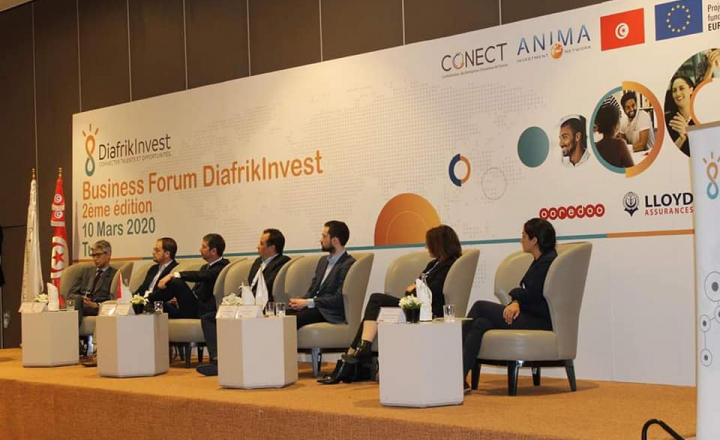 DiafrikInvest: Business meetings for a sustainable economic and social development