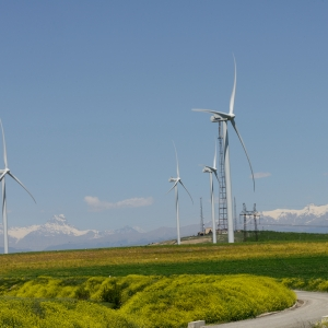Wind farm in Gori successfully generates renewable energy in Georgia