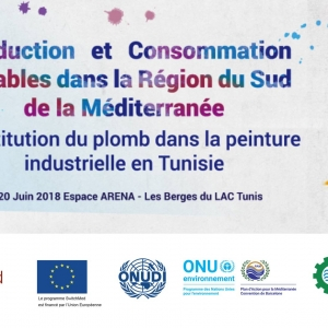 The substitution of lead in industrial painting in Tunisia