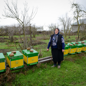 Aytekin Sadiqova and her honey farm: The revival of a family tradition