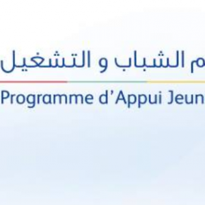 Algeria : EU contributes to better professional integration of people with disabilities