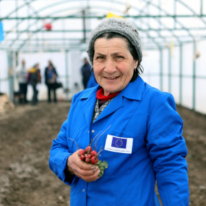 Eco-friendly and almost free energy: Armenian communities switch to biogas thanks to EU