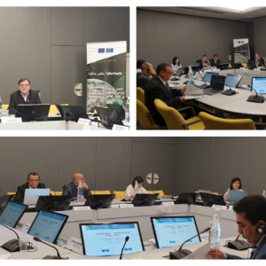 EU-funded CyberSouth steering committee reviewed achievements