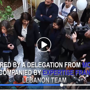 European Union in Lebanon, Expertise France, German Federal Ministry for Economic Cooperation and Development (BMZ)