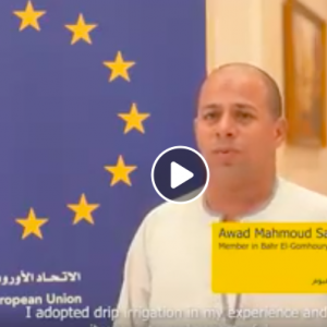 Egypte : EU supporting water consumption rationalisation