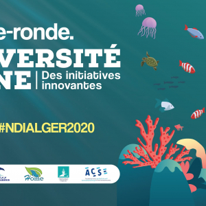 Algeria : EU Delegation interested in marine biodiversity