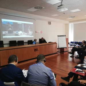 EU-funded project organises workshop for Southern neighbourhood countries on collaboration with European civil protection mechanism