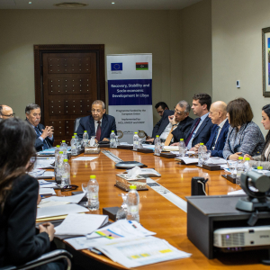 Progress of EU-funded programme for better access to services in Libya presented