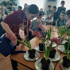 Flowers for Martisor: EU helps pupils of Moldova to grow flowers for spring holiday