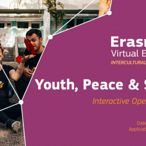 Erasmus+ Virtual Exchange upcoming online course explores youth, peace and security
