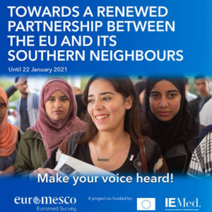 Euromed survey still open until 22 January
