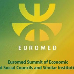 Euromed Summit of Economic and Social Councils to discuss new ENP and migration