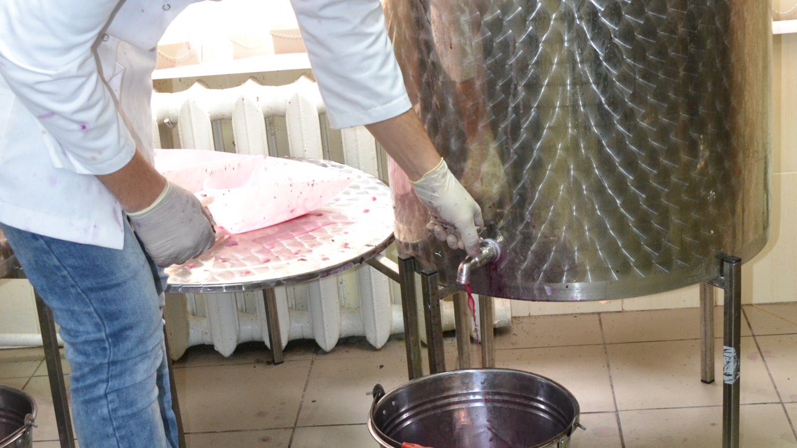 The Oenology Department and Micro Winemaking Unit of the Technical University of Moldova