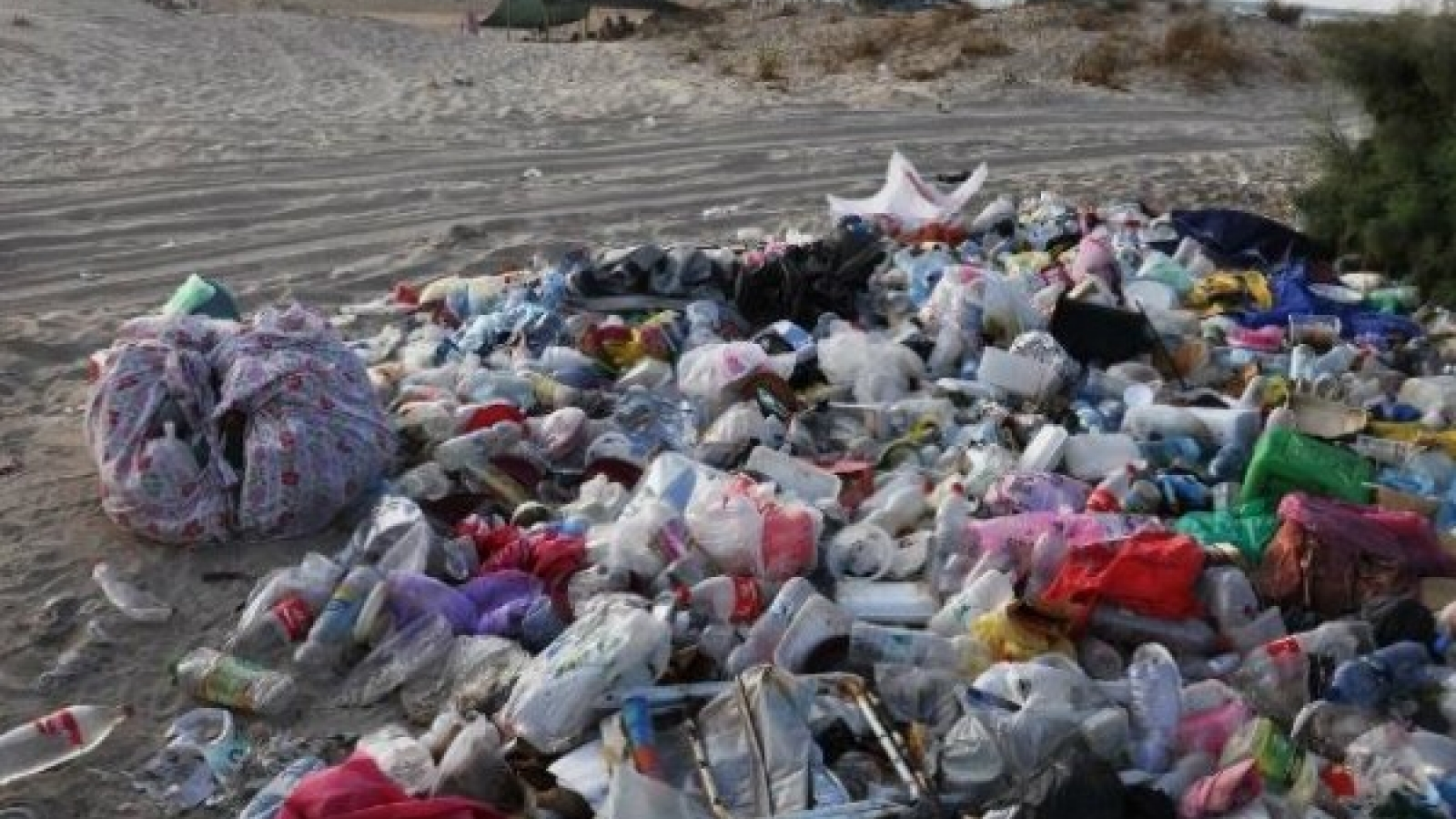 Israel halves plastic bag waste in the sea one year after new law on ... 3c470f9d43360