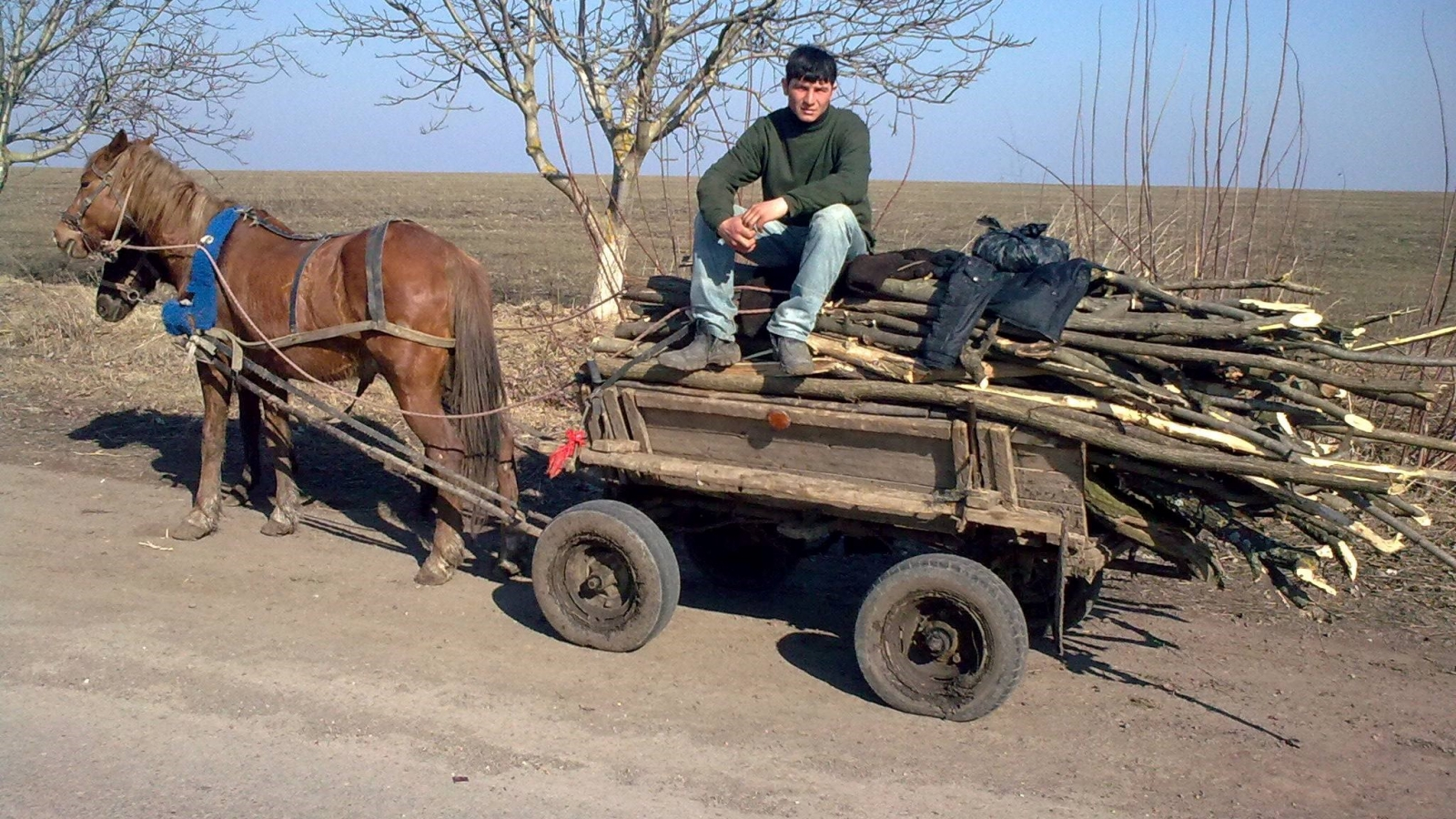 A villager, who collects fuelwood for his household. Soroca district, Moldova (Credit: FLEG programme)